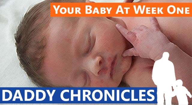 Daddy Chronicles: Your Baby At Week One