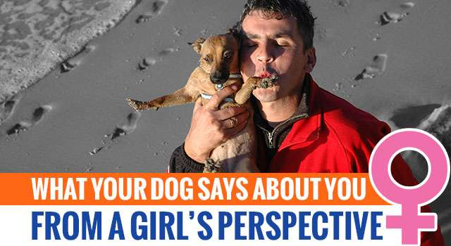 A Woman's Perspective: What Your Dog Says About You