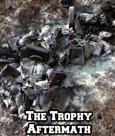 The Burnt Trophies
