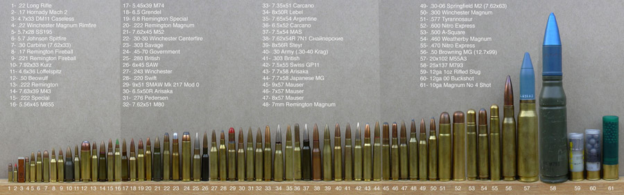Common Rifle Ammo Sizes