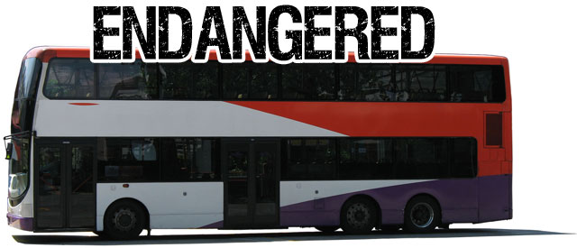 double-decker-endangered