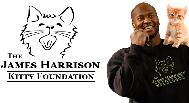 James Harrison Starts Cat Foundation