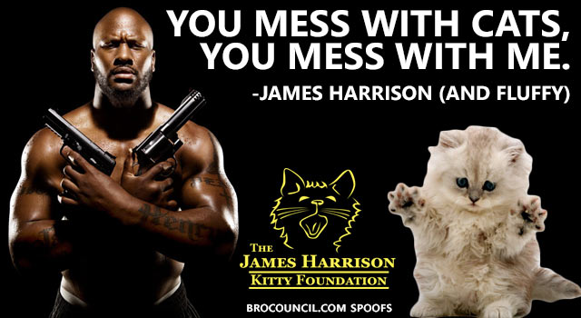 James Harrison Cat Quote
