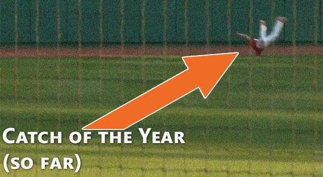 Baseball Catch Of The Year (So Far)