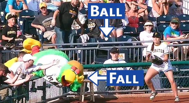 The Pirate Parrot Goes For A Foul Ball; Falls Over Railing