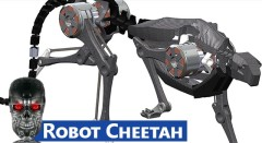 MIT Has Robotic Cheetahs - The End Is Near